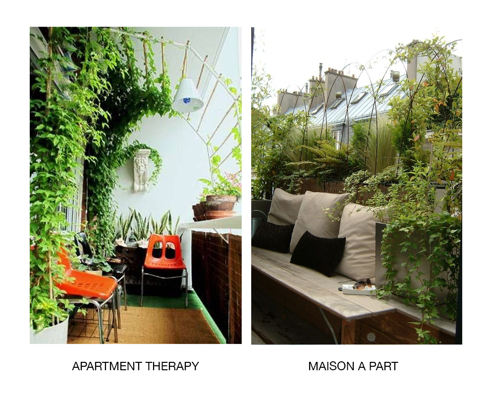 Зелений рай у вашій оселі: Як самостійно озеленити балкон