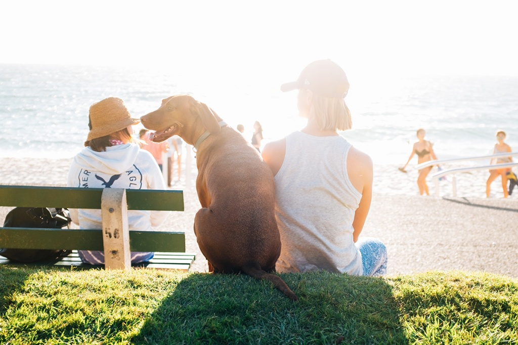 7 книг про справжню дружбу до міжнародного дня друзів