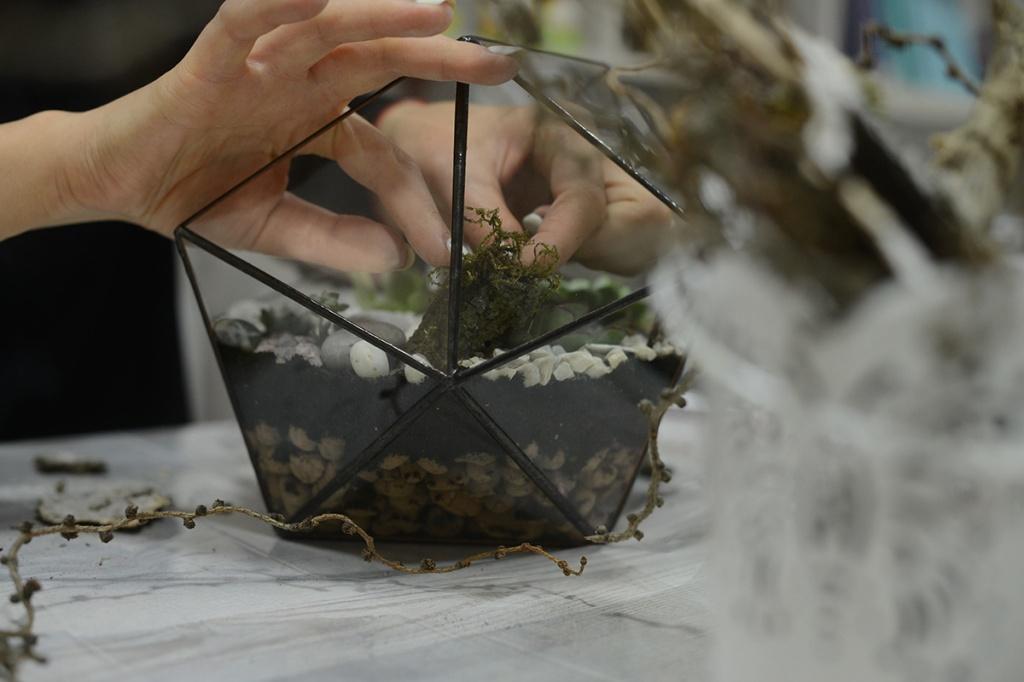 Як облаштувати флораріум: Інструкція від фітодизайнера