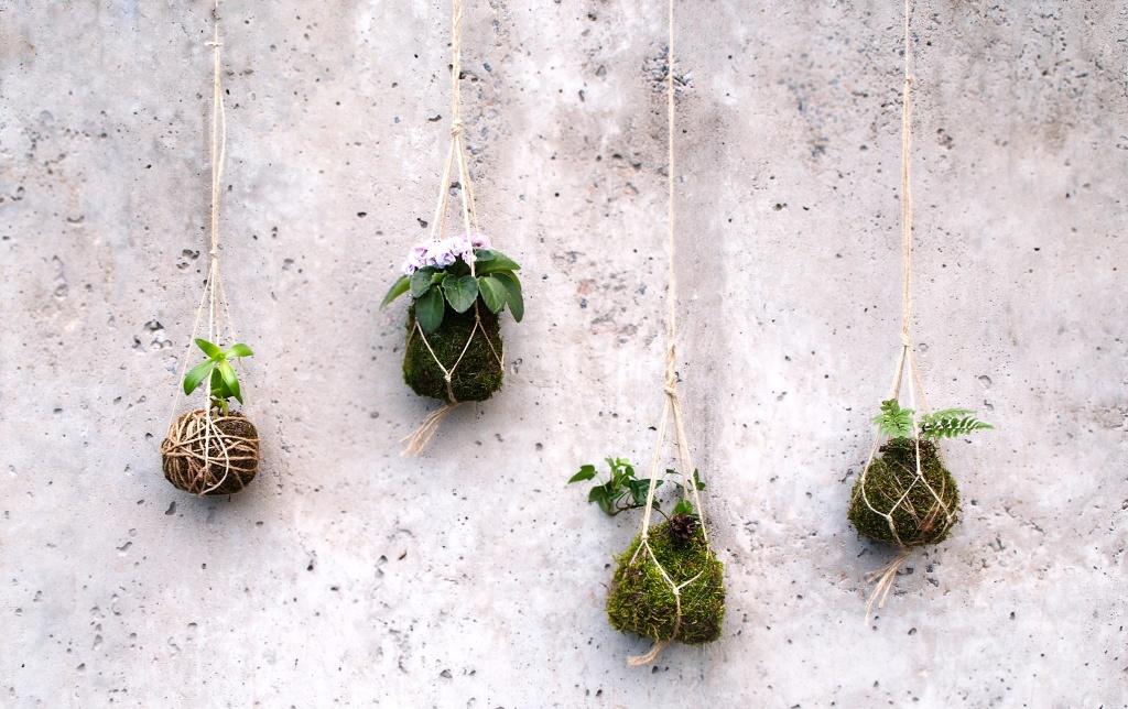 Живой горшок для растений – Кокедама