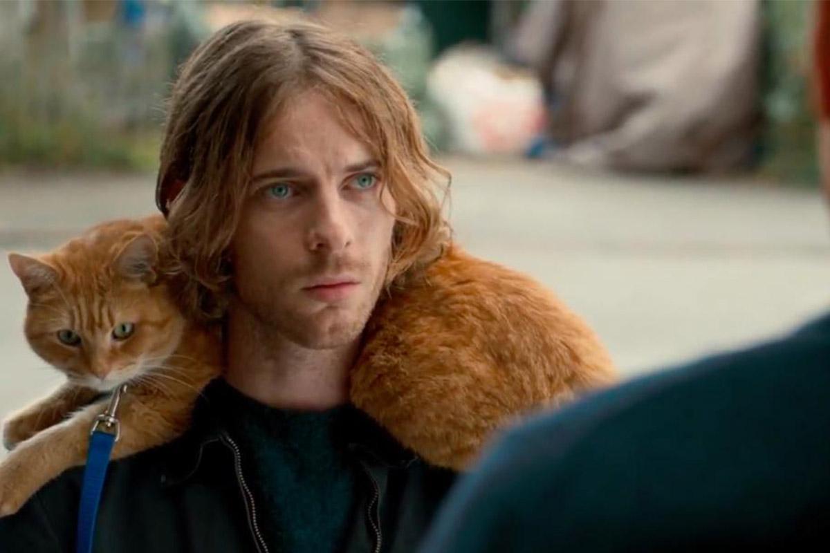 «Уличный кот по кличке Боб»| EVA Blog